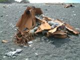 Remains of some unfortunate ship which has stranded