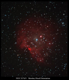 NGC-2174-5 in The Monkey Head Nebula Orientation