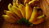 se�orita banana