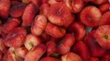 flat peaches