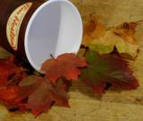 autumn_ii