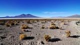 In the desert south of the Salar de Uyuni