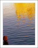 a golden reflection..