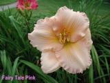 Fairy Tale Pink.jpg