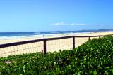 Sand, Surf, Sun....