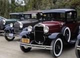 Ford Rally in Santa Cruz