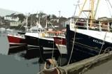 Scottish Harbor