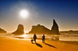 Walk in the Sun