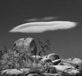 Joshua Tree UFO cloud