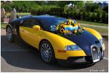 Festival Bugatti Molsheim  100 ans d'Excellence