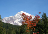 Mt. Rainier October