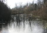 Snake Lake Winter