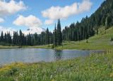 21 tipsoo lake