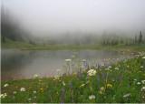 19 mists at tipsoo