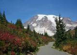 73 fall mountain path