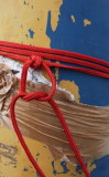 Red rope.jpg
