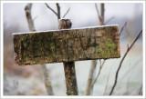 Hunting preserve (3)