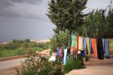 Zen 05 - Moroccan Zephyr