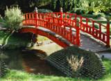Zen 58 - Serene walk