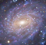 NGC 6744 The Pavo Galaxy