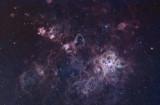 Tarantula Nebula Region