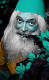 BILL BLUE GNOME.jpg