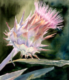 accepted into juried Colors of Augumn, thistle.jpg