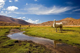 The Beauty of Chile, Argentine and Bolivia caught in images