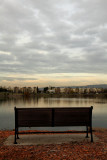 Almaden Lake - 12/16/10