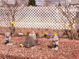 Vacaville Housewarming -  4/15/06