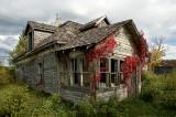 Falling down house
