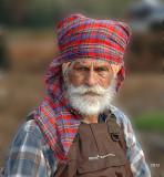 Portrait of cranberry field worker
