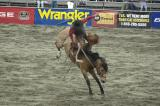 Cloverdale Rodeo !