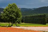 Near L'Isle-sur-la-Sorgue