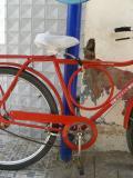 Sturdy bike lock