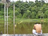 Natural swimming pool, Puerto Maldonado, Peru