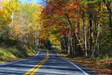 Pennsylvania - A road I can travel forever, Fall Colors