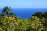 Maui - Pacific's Best Island