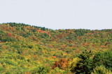 End of September fall foliage, White Mountain National Forest, NH