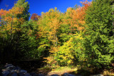 Franconia Notch State Park, NH - fall colors