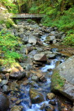 River winds in Franconia Notch State Park, NH