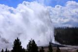 Old Faithful erupting - Yellowstone National Park