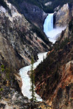 The Upper Falls and the Yellowstone River - Yellowstone National Park