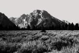 Grand Teton National Park, Wyoming - Mt. Moran