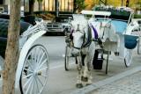 Philadelphia - Center City carriage rides