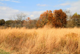 Prophetstown State Park, IN