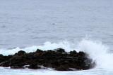 Crashing waves, 17 Mile Drive, Monterey, California