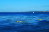 Kayaking in Monterey Bay, California