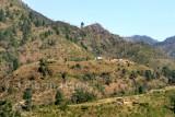 Village near Drieer
