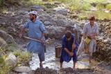 Workers in Sehrmandi